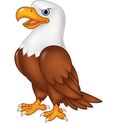 Cartoon eagle posing isolated on white background vector