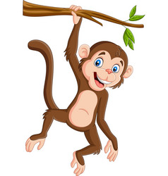 cartoon monkey hanging in tree branch vector image