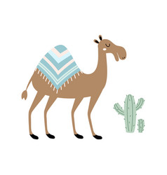 Cute camel isolated on white vector