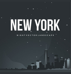 night new york vector image
