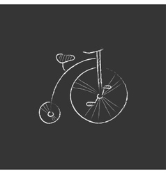 Old bicycle with big wheel Drawn in chalk icon vector