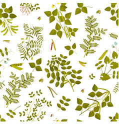 Seamless pattern with legumes plants vector