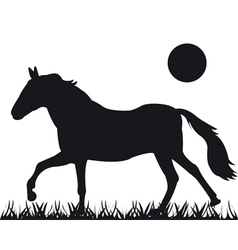 silhouette of the horse vector image