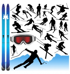 ski design elements vector image vector image