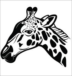 Giraffe head 1 vector