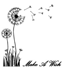 Hand drawn greeting card dandelion flower blow vector