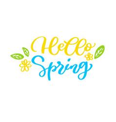 hello spring handwritten lettering quote vector image