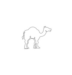one continuous line drawing cute arabian camel vector image