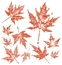 Vintage maple leafs pack vector
