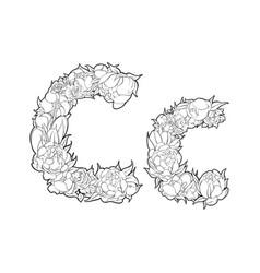 flower alphabet the letter c vector image vector image
