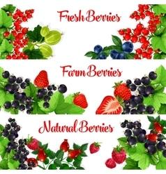 Fresh berries banners set vector image vector image