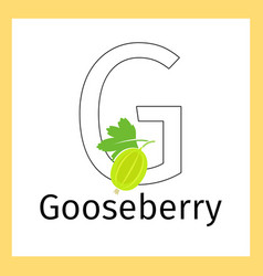 Gooseberry and letter g coloring page vector