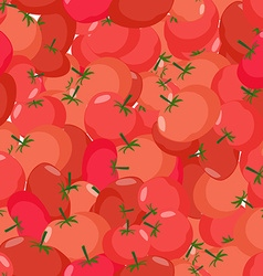 Tomato pattern Seamless background with red vector image vector image