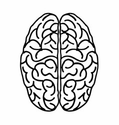 brain freehand vector image