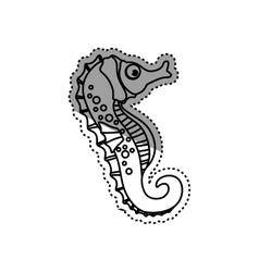Sea horse animal vector image