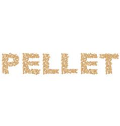 written pellet isolated on white vector image