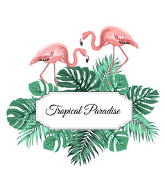 tropical paradise banner border frame decorated vector image
