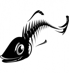 fish skeleton vector image vector image