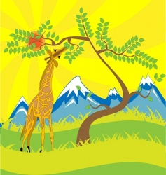 giraffe and tree vector image