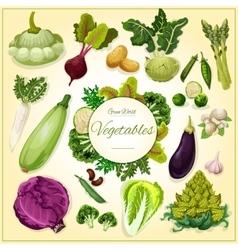 Vegetable bean and mushroom cartoon poster vector image