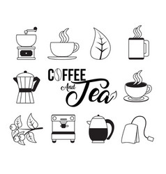 Coffee and tea collection vector