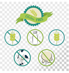 gluten free labels collection isolated on vector image