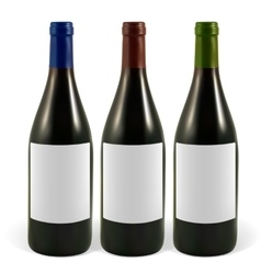 Set realistic wine bottles vector image