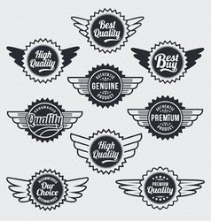 Retro vintage label Badge Set vector image