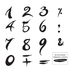 Set hand-drawn ink calligraphy numbers and symbols vector image vector image