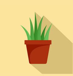 Aloe vera in pot icon flat style vector