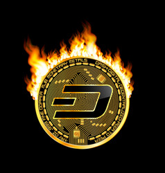 Crypto currency dash golden symbol on fire vector