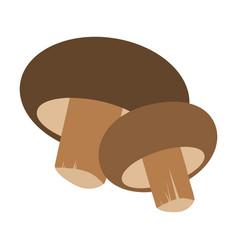 fresh mushrooms shiitake isolated on white vector image