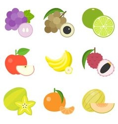 Fruit icons set 4 vector