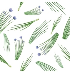 Watercolor seamless pattern hand drawn herb chives vector