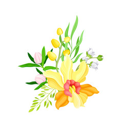 Yellow orchid bloom with labellum and floral vector