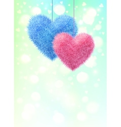 Pink and blue fluffy hearts pair on light shining vector image vector image