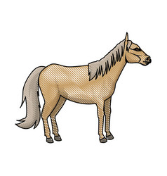 horse animal mammal nature equine icon vector image