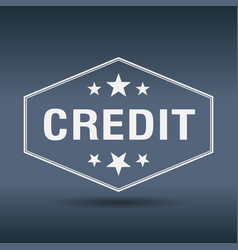 credit hexagonal white vintage retro style label vector image vector image