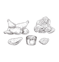 Chicken nuggets and chips sketch style icon set vector