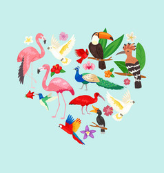 collection beautiful exotic tropical birds vector image