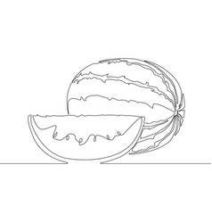 continuous line drawing watermelon or melon vector image