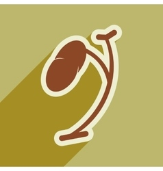 Icon of human spleen in flat style vector