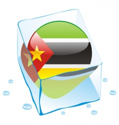 Mozambique flag vector image