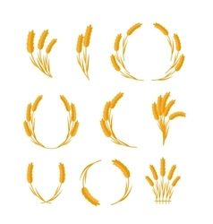 Set of Wheat Ears Concepts in Flat Design vector