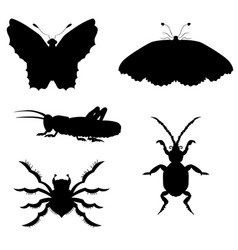 set of silhouettes of insects vector image