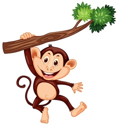Cute monkey hanging on the branch vector image
