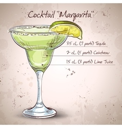 Cocktail alcohol Margarita vector