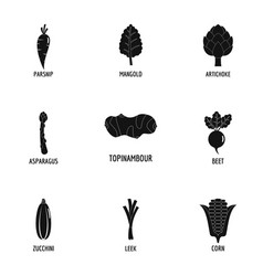 Floristic icons set simple style vector