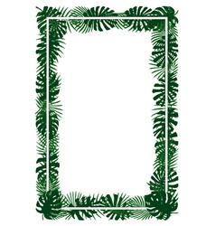 green plants exotic leaves banana leaf areca vector image