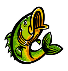 Jumping bass fish icon vector